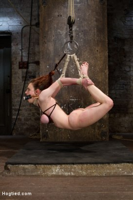 Photo number 8 from Big Titted Slut Iona Grace Suspended and Tormented on HogTied.com shot for Hogtied on Kink.com. Featuring Iona Grace in hardcore BDSM & Fetish porn.