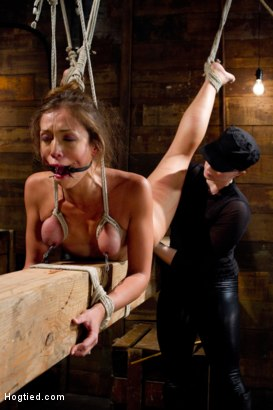 Photo number 2 from Audrey Rose Challenged with Tough Beam Bondage shot for Hogtied on Kink.com. Featuring Audrey Rose in hardcore BDSM & Fetish porn.