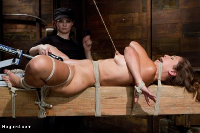 Photo number 13 from Audrey Rose Challenged with Tough Beam Bondage shot for Hogtied on Kink.com. Featuring Audrey Rose in hardcore BDSM & Fetish porn.