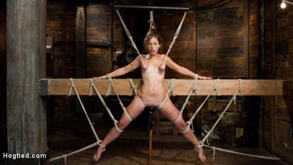 Photo number 15 from Audrey Rose Challenged with Tough Beam Bondage shot for Hogtied on Kink.com. Featuring Audrey Rose in hardcore BDSM & Fetish porn.