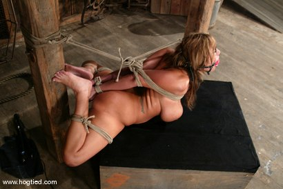 Photo number 11 from Ava Devine shot for Hogtied on Kink.com. Featuring Ava Devine in hardcore BDSM & Fetish porn.