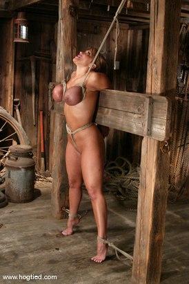 Photo number 6 from Ava Devine shot for Hogtied on Kink.com. Featuring Ava Devine in hardcore BDSM & Fetish porn.