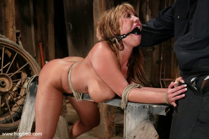 Photo number 9 from Ava Devine shot for Hogtied on Kink.com. Featuring Ava Devine in hardcore BDSM & Fetish porn.