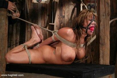 Photo number 10 from Ava Devine shot for Hogtied on Kink.com. Featuring Ava Devine in hardcore BDSM & Fetish porn.