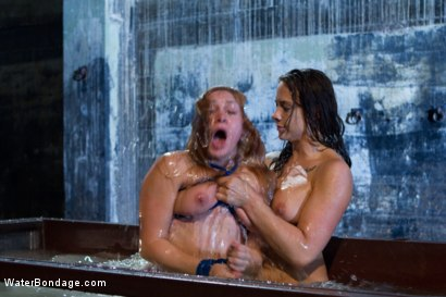 Photo number 9 from Part 3: The Tank shot for Water Bondage on Kink.com. Featuring Phoenix Marie, Chanel Preston, Lea Lexis and Bobbi Starr in hardcore BDSM & Fetish porn.