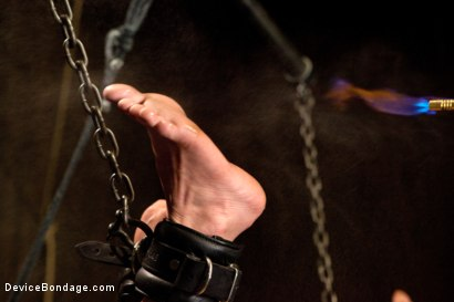 Photo number 15 from Bryn Blayne gets a smack-down into submission - Live Show Part 2 shot for Device Bondage on Kink.com. Featuring Bryn Blayne and Alani Pi in hardcore BDSM & Fetish porn.