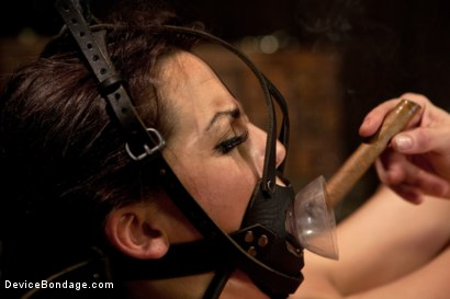Photo number 7 from Bryn Blayne gets a smack-down into submission - Live Show Part 2 shot for Device Bondage on Kink.com. Featuring Bryn Blayne and Alani Pi in hardcore BDSM & Fetish porn.