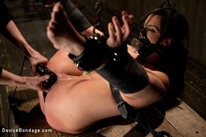 Photo number 11 from Bryn Blayne gets a smack-down into submission - Live Show Part 2 shot for Device Bondage on Kink.com. Featuring Bryn Blayne and Alani Pi in hardcore BDSM & Fetish porn.