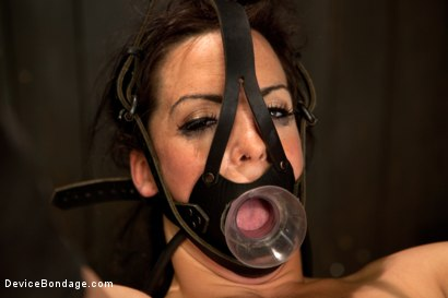 Photo number 6 from Bryn Blayne gets a smack-down into submission - Live Show Part 2 shot for Device Bondage on Kink.com. Featuring Bryn Blayne and Alani Pi in hardcore BDSM & Fetish porn.