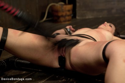 Photo number 4 from Bryn Blayne gets a smack-down into submission - Live Show Part 3 shot for Device Bondage on Kink.com. Featuring Bryn Blayne and Alani Pi in hardcore BDSM & Fetish porn.