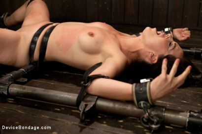 Photo number 6 from Bryn Blayne gets a smack-down into submission - Live Show Part 3 shot for Device Bondage on Kink.com. Featuring Bryn Blayne and Alani Pi in hardcore BDSM & Fetish porn.