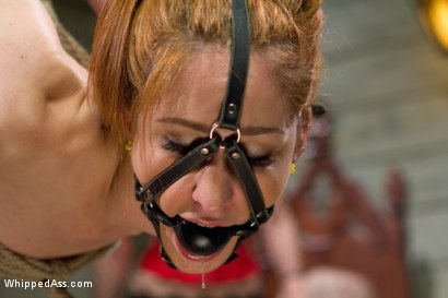 Photo number 11 from Calico returns for first lesbian double penetration! shot for Whipped Ass on Kink.com. Featuring Maitresse Madeline Marlowe , Skin Diamond and Calico in hardcore BDSM & Fetish porn.