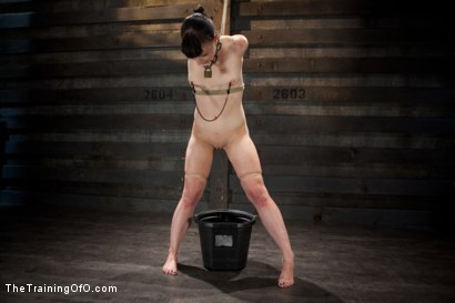 Photo number 2 from Training Katharine Kane-Final Day-Live shot for The Training Of O on Kink.com. Featuring Katharine Cane and Soma Snakeoil (Goddess Soma) in hardcore BDSM & Fetish porn.