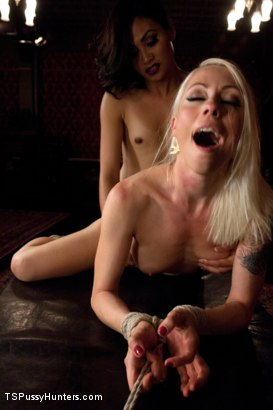 Photo number 11 from Paying Back a Debt with Her Pussy: Lorelei Lee and Annalise Rose shot for TS Pussy Hunters on Kink.com. Featuring Annalise Rose and Lorelei Lee in hardcore BDSM & Fetish porn.