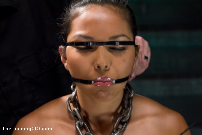 Photo number 1 from Training Adrianna Luna - Day 3 shot for The Training Of O on Kink.com. Featuring Adrianna Luna in hardcore BDSM & Fetish porn.