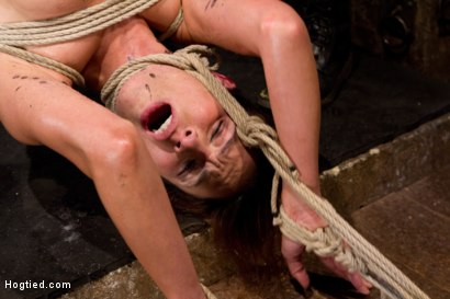 Photo number 7 from Amber Rayne Live Show Part 2 - Drawn and Quartered shot for Hogtied on Kink.com. Featuring Amber Rayne in hardcore BDSM & Fetish porn.