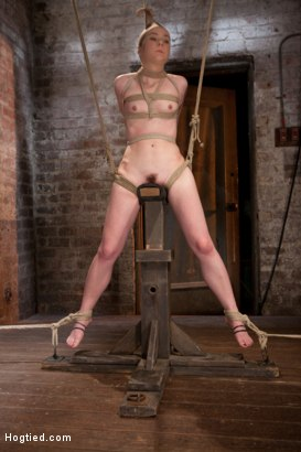 Photo number 12 from AnnaBelle Lee - Red Headed Slut - Live Show Part 3 shot for Hogtied on Kink.com. Featuring AnnaBelle Lee in hardcore BDSM & Fetish porn.