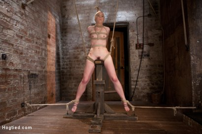 Photo number 11 from AnnaBelle Lee - Red Headed Slut - Live Show Part 3 shot for Hogtied on Kink.com. Featuring AnnaBelle Lee in hardcore BDSM & Fetish porn.