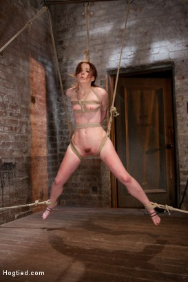 Photo number 4 from AnnaBelle Lee - Red Headed Slut - Live Show Part 3 shot for Hogtied on Kink.com. Featuring AnnaBelle Lee in hardcore BDSM & Fetish porn.