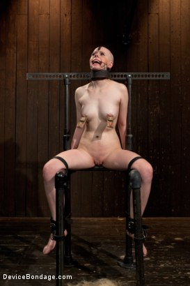 Photo number 11 from Alani Pi - Head Shaved Slut Live Show - Part 1 shot for Device Bondage on Kink.com. Featuring Alani Pi and Coral Aorta in hardcore BDSM & Fetish porn.
