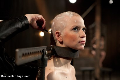 Photo number 7 from Alani Pi - Head Shaved Slut Live Show - Part 1 shot for Device Bondage on Kink.com. Featuring Alani Pi and Coral Aorta in hardcore BDSM & Fetish porn.