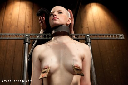 Photo number 12 from Alani Pi - Head Shaved Slut Live Show - Part 1 shot for Device Bondage on Kink.com. Featuring Alani Pi and Coral Aorta in hardcore BDSM & Fetish porn.