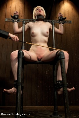 Photo number 5 from Alani Pi - Head Shaved Slut Live Show - Part 1 shot for Device Bondage on Kink.com. Featuring Alani Pi and Coral Aorta in hardcore BDSM & Fetish porn.