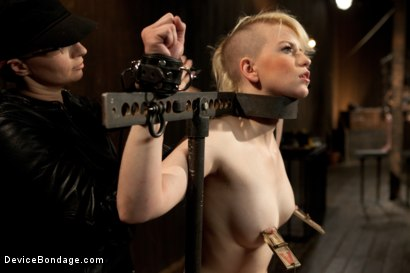 Photo number 6 from Alani Pi - Head Shaved Slut Live Show - Part 1 shot for Device Bondage on Kink.com. Featuring Alani Pi and Coral Aorta in hardcore BDSM & Fetish porn.