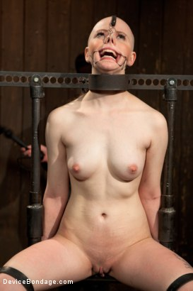 Photo number 8 from Alani Pi - Head Shaved Slut Live Show - Part 1 shot for Device Bondage on Kink.com. Featuring Alani Pi and Coral Aorta in hardcore BDSM & Fetish porn.