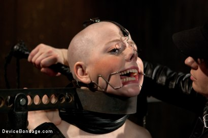 Photo number 10 from Alani Pi - Head Shaved Slut Live Show - Part 1 shot for Device Bondage on Kink.com. Featuring Alani Pi and Coral Aorta in hardcore BDSM & Fetish porn.