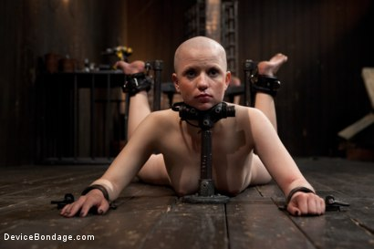 Photo number 3 from Alani Pi - Head Shaved Slut Live Show - Part 2 shot for Device Bondage on Kink.com. Featuring Alani Pi and Coral Aorta in hardcore BDSM & Fetish porn.