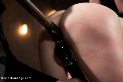Photo number 11 from Alani Pi - Head Shaved Slut Live Show - Part 3 shot for Device Bondage on Kink.com. Featuring Alani Pi and Coral Aorta in hardcore BDSM & Fetish porn.