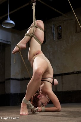 Photo number 9 from Melody Jordan Contorted in Severe Rope Bondage shot for Hogtied on Kink.com. Featuring Melody Jordan and Mark Davis in hardcore BDSM & Fetish porn.