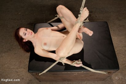 Photo number 14 from Melody Jordan Contorted in Severe Rope Bondage shot for Hogtied on Kink.com. Featuring Melody Jordan and Mark Davis in hardcore BDSM & Fetish porn.