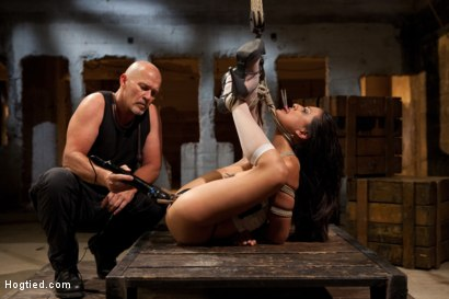 Photo number 11 from Lyla Storm Cums and Squirts just from Sucking Cock - Dominated by Mark Davis! shot for Hogtied on Kink.com. Featuring Lyla Storm and Mark Davis in hardcore BDSM & Fetish porn.