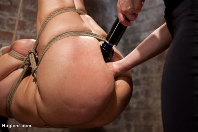 Photo number 8 from Ashli Orion Cums Back for More Brutal Ties only on HogTied shot for Hogtied on Kink.com. Featuring Ashli  Orion in hardcore BDSM & Fetish porn.