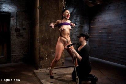 Photo number 15 from Ashli Orion Cums Back for More Brutal Ties only on HogTied shot for Hogtied on Kink.com. Featuring Ashli  Orion in hardcore BDSM & Fetish porn.