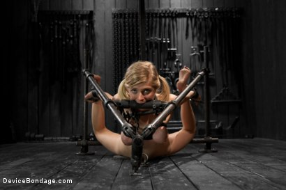 Photo number 7 from Blonde Cunt Penny Pax Subjected to Brutal Bondage shot for Device Bondage on Kink.com. Featuring Penny Pax in hardcore BDSM & Fetish porn.