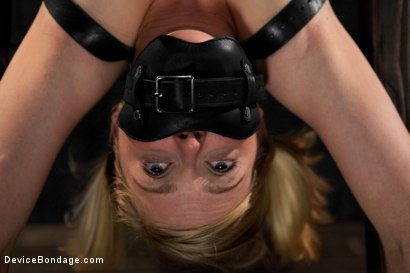 Photo number 11 from Blonde Cunt Penny Pax Subjected to Brutal Bondage shot for Device Bondage on Kink.com. Featuring Penny Pax in hardcore BDSM & Fetish porn.