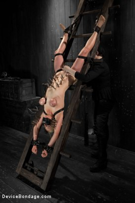 Photo number 14 from Blonde Cunt Penny Pax Subjected to Brutal Bondage shot for Device Bondage on Kink.com. Featuring Penny Pax in hardcore BDSM & Fetish porn.