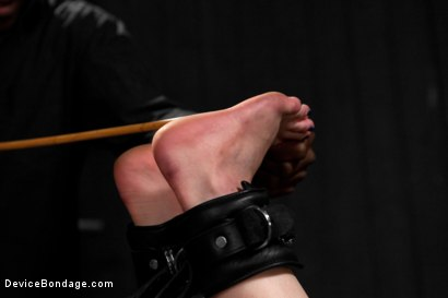 Photo number 3 from Katharine Cane vs Jack Hammer shot for Device Bondage on Kink.com. Featuring Jack Hammer and Katharine Cane in hardcore BDSM & Fetish porn.