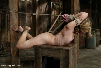 Photo number 11 from Kelly Wells shot for Hogtied on Kink.com. Featuring Kelly Wells in hardcore BDSM & Fetish porn.