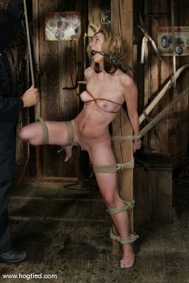 Photo number 4 from Kelly Wells shot for Hogtied on Kink.com. Featuring Kelly Wells in hardcore BDSM & Fetish porn.
