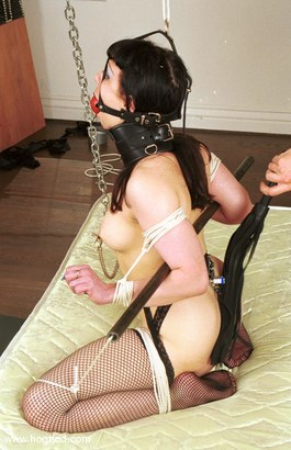 Photo number 14 from Avarice shot for Hogtied on Kink.com. Featuring Avarice in hardcore BDSM & Fetish porn.