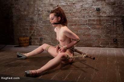 Photo number 15 from AnnaBelle Lee - Red Headed Slut - Live Show Part 4 shot for Hogtied on Kink.com. Featuring AnnaBelle Lee in hardcore BDSM & Fetish porn.