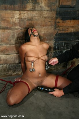 Photo number 5 from Sydnee Capri shot for Hogtied on Kink.com. Featuring Sydnee Capri in hardcore BDSM & Fetish porn.