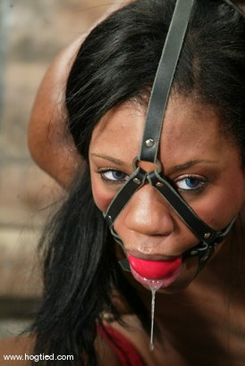 Photo number 8 from Sydnee Capri shot for Hogtied on Kink.com. Featuring Sydnee Capri in hardcore BDSM & Fetish porn.
