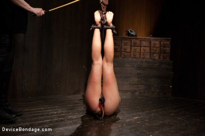 Photo number 15 from Chastity Lynn - Cum Begging Cunt - Live Show Part 1 shot for Device Bondage on Kink.com. Featuring Chastity Lynn in hardcore BDSM & Fetish porn.