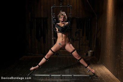 Photo number 5 from Chastity Lynn - Cum Begging Cunt - Live Show Part 4 shot for Device Bondage on Kink.com. Featuring Chastity Lynn in hardcore BDSM & Fetish porn.