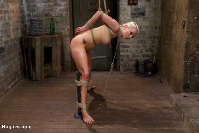 Photo number 14 from Tough Blonde Bombshell & Fan Favorite Lorelei Lee - Complete Edited Live Show shot for Hogtied on Kink.com. Featuring Lorelei Lee and Mark Davis in hardcore BDSM & Fetish porn.
